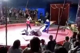 Momentul șocant în care un urs își atacă antrenorul în timpul unui spectacol de circ. VIDEO