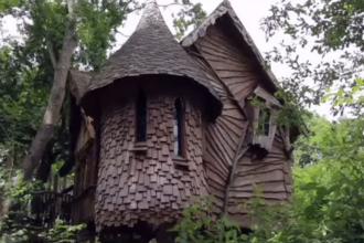 Căsuțele în pădure sau în copaci, noile atracții pentru turiștii britanici
