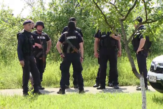 Ucigaşul poliţistului din Timiş, căutat în continuare. Ar fi fugit într-un cimitir