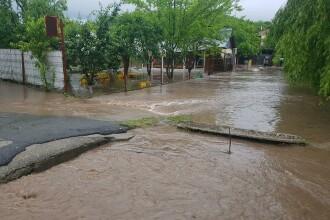 Cod roşu de inundaţii pe râurile din bazinul Bega, în judeţele Timiş şi Arad