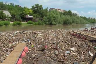 Reziduuri din plastic şi corpuri de animale moarte, pe faleza Dunării. Ce au lăsat viiturile în urmă