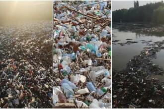 Poluare pe Dunăre. Video cu tonele de deșeuri strânse la Galați, după inundații