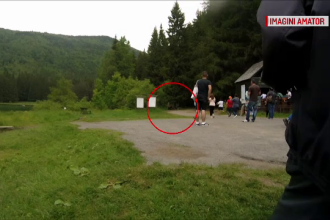 Momente de groază la lacul Sfânta Ana: o ursoaică s-a năpustit asupra unei turiste din Ungaria