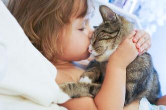 O pisică lângă fiecare copil. Motivul pentru care medicul ne dă acest sfat