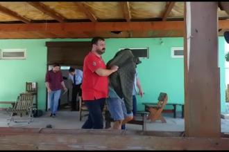 Ce au descoperit polițiștii în cazul bărbatului care a înjunghiat o femeie în Costinești