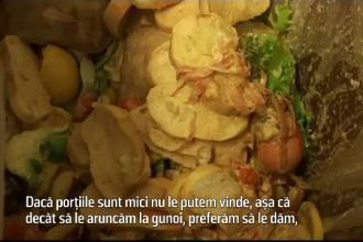În timp ce în unele ţări miliarde de oameni suferă de foame, noi aruncăm tone la gunoi