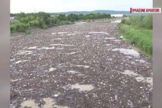 Imaginile dezastrului. Râuri de gunoaie în Buzău, din cauza inundațiilor din ultimele zile
