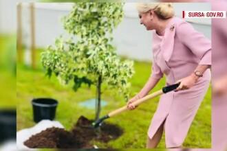 Iohannis și Dăncilă, la Renault. Președintele a atacat Guvernul, Dăncilă a plantat un pom