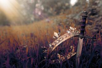 Un copil de 12 ani a găsit o sabie din secolul al XVI-lea într-o pădure din Germania