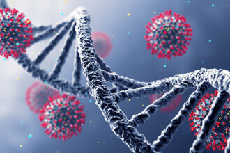 O nouă mutație a SARS-CoV-2, denumită ''Delta Plus'', a fost decoperită în India
