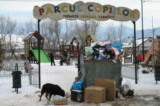 Parcul gunoaielor, motiv de mandrie pentru primaria din Zarnesti!