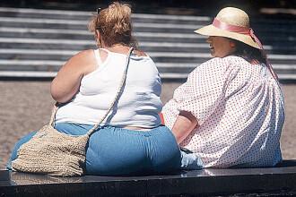 Obezitatea ar putea fi cauzata de o bacterie