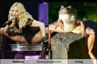 Are Madonna picioare de broasca?!