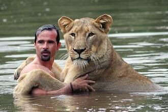 Incredibil! Lectia de inot cu leoaica!