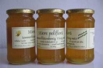 Apicultorii romani au cu se mandri! Au ajuns pe locul 4 in Europa, la productie de miere