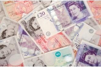Un catel a lasat o familie din Marea Britanie fara banii de concediu. Cum au reusit proprietarii sa-si recupereze dauna