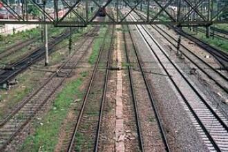 Nimic nu le scapa hotilor, nici macar barierele de cale ferata. Furturile ajung la 10 mil de lei/an