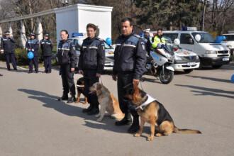 Politisti in rol de infractori, impuscaturi si retineri ca in filme de Ziua Politiei Romane