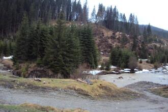 Marea defrisare. Romania ramane fara paduri. Fotografii de la utilizatori