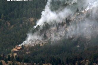 Alerta in statul Colorado. Incendiile de vegetatie fac ravagii