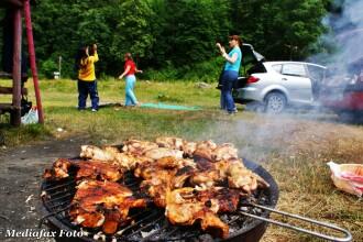 Gratarele pot sfarai intr-un singur loc din Timisoara. Unde poti face insa picnic fara fum?