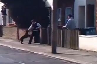 VIDEO socant:5 politisti, atacati de pitbull-ul infractorului.