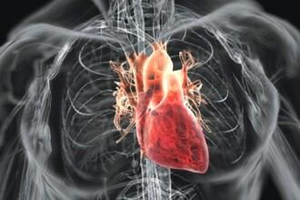 În România, bolile cardiovasculare au facut 2.5 milioane de morți, cât populația Capitalei