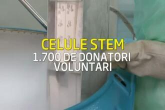 Esecul Registrului donatorilor romani de celule stem. Sute de romani au murit asteptand transplantul