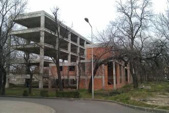 Pentru ce a fost defrisat un parc din Arad: o cladire de birouri pentru care nu s-au mai gasit bani