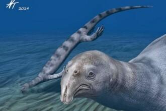 Oamenii de stiinta au descoperit in China fosila unei reptile extrem de ciudata. Avea sute de dinti pe o singura falca