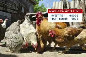 Cum au ajuns de la o mica afacere de familie la o investitie de 100.000 de euro. Profitul este insa asigurat