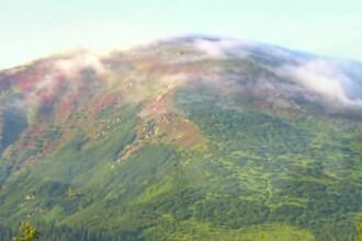 Cei care ajung aici au impresia ca au nimerit in Paradis. Situl Frumoasa din muntii Parang atrage mii de turisti anual