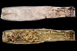 Arheologii din Leicester au descoperit un mormant misterios langa cel al lui Richard al III-lea. Cui ar apartine scheletul