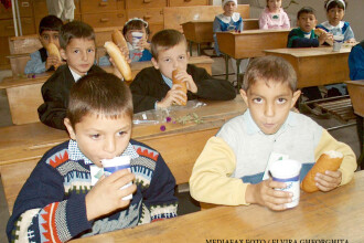 Cornul si laptele, programul care ii ingrasa pe copii si le da indigestii. 100 de milioane de euro ajung anual la gunoi sau la catei