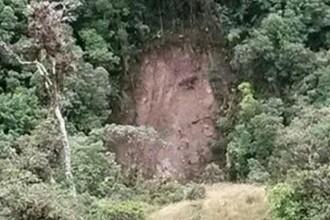 Chipul lui Iisus aparut pe un deal impadurit din Columbia, dupa o alunecare de teren.