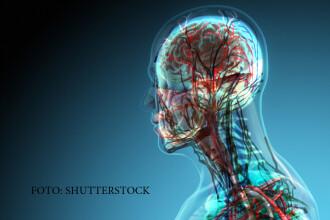 Creierul si maduva spinarii NU simt durerea. Problemele grave pe care le poate indica lipsa fortei
