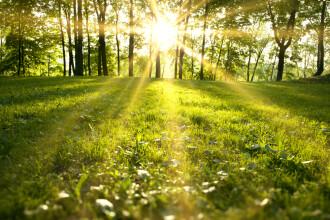 Vreme frumoasa, cu mult soare si temperaturi peste media perioadei, pana la 22 de grade. Prognoza pentru urmatoarele zile