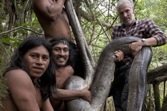 Cel mai lung sarpe din lume, descoperit in jungla amazoniana, la filmarea unui documentar BBC. Ce lungime are. VIDEO