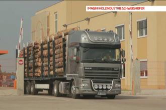 Primele companii din Romania care au anuntat ca renunta la contractul cu cel mai mare procesator de lemn din tara