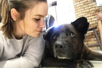 O femeie a postat pe internet poze cu cainele sau de 9 ani, inainte de a fi eutanasiat. Cum si-au petrecut ultima zi impreuna