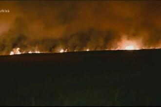 Un barbat din Arges a vrut sa dea foc miristii, dar a ars de viu. Victima si-ar putea pierde si subventia APIA