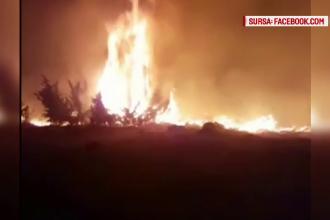 Incendiu de vegetatie in Maramures, extins pe 10 hectare. 80 de sateni i-au ajutat pe pompieri sa stinga flacarile