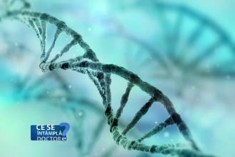 Profilul genetic este cel mai bun nutritionist. Doar asa putem afla care se depun mai repede, grasimile sau dulciurile