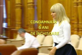 Avocatul Elenei Udrea, după condamnare: Decizie nedreaptă, absolut nejustificată şi nelegală