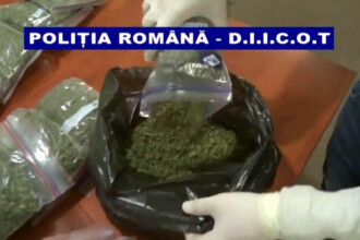 Barbat din Galati, prins cu un kilogram si jumatate de marijuana. Ce a gasit politia la el acasa
