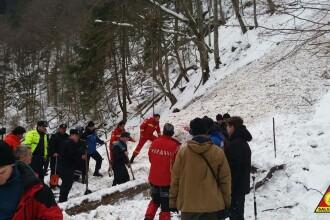 Salvamontiştii, despre avalanşa din Cheile Tişiţei: Un eveniment atipic într-o zonă împădurită