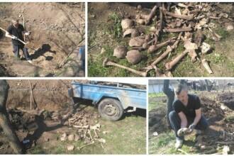 Cranii și oase umane, într-o curte din Arad. Misterul descoperirii sinistre se adâncește