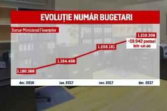 """Record de noi bugetari în 2017. """"Libere, beneficii, salarii mult mai mari la stat"""""""