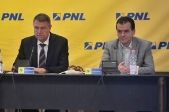 PNL va strânge semnături pentru candidatura lui Iohannis din 10 august, în ziua protestelor