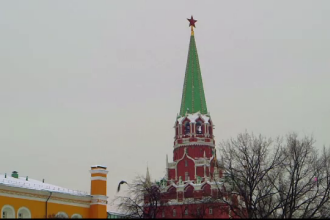 Kremlinul, apărat cu păsări de pradă. Informaţiile despre ele sunt secrete